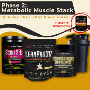 Phase 2: Metabolic Muscle